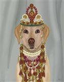 Yellow Labrador and Tiara, Portrait