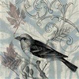 Autumn Songbird II