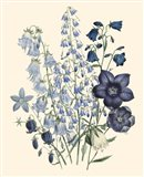 Florals IV