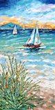 Wind in my Sail I