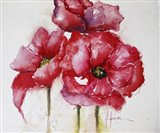 Fuchsia Poppies I