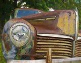 Small Rusty Hudson I
