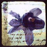 Blooming Purple II