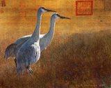 Walking Cranes