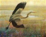 Foggy Heron I