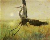 Foggy Heron II