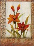 Tulip Inset I