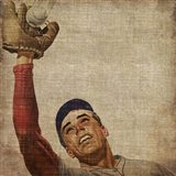 Vintage Sports VIII