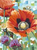 Vivid Poppies II