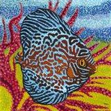 Brilliant Tropical Fish II