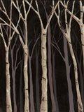 Midnight Birches I