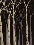 Midnight Birches II
