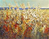 Field of Spring Flowers II