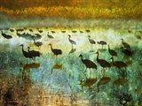 Cranes in Mist I