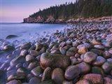 Maine Acadia