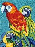 Birds in Paradise III