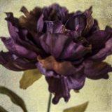 Lush Vintage Florals IV