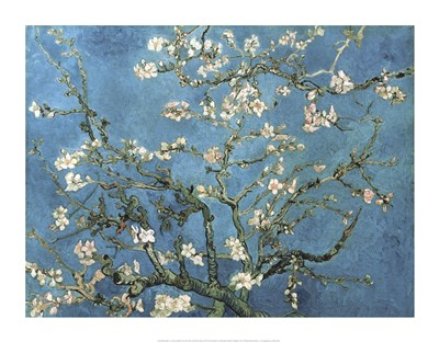 Almond Blossom, 1890 Poster by Vincent Van Gogh for $112.50 CAD