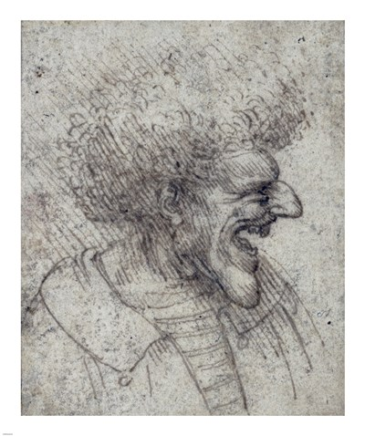Caricature of a Man with Bushy Hair Poster by Leonardo Da Vinci for $62.50 CAD