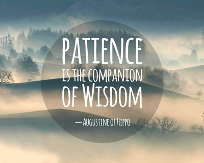 Patience Is The Companion Of Wisdom - Foggy Hills Poster by Quote Master for $56.25 CAD