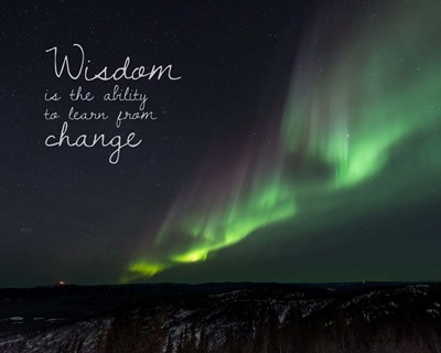 Wisdom Is The Ability To Learn From Change - Night Sky Aurora Poster by Color Me Happy for $56.25 CAD