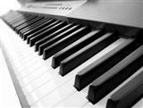 Yamaha P120 close-up of Piano Keys