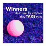 Winners Don't Wait for Chances