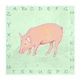 Pig Alphabet