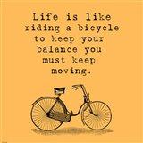 Orange Einstein Bicycle Quote