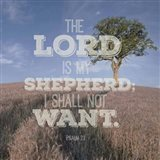 Psalm 23 The Lord is My Shepherd - Photo