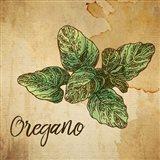 Oregano on Burlap