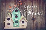 No Place Like Home Bird Houses