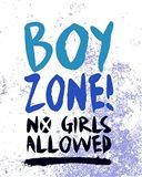 Boy Zone-Grunge
