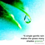 A Single Gentle Rain - Henry Thoreau Quote (Droplet)