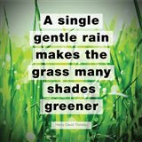 A Single Gentle Rain - Henry Thoreau Quote (Vibrant)
