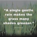 A Single Gentle Rain - Henry Thoreau Quote (Dark)