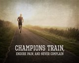 Champions Train Man Color
