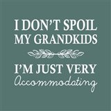 I Don't Spoil My Grandkids Leaf Design Teal