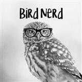 Bird Nerd - Owl