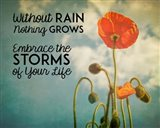 Without Rain Nothing Grows Color