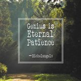 Genius is Eternal Patience - Forest