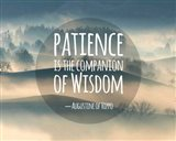 Patience Is The Companion Of Wisdom - Foggy Hills