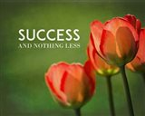 Success And Nothing Less - Flowers Color
