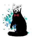 Dapper Red Panda