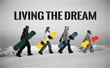 Living The Dream - Pop Of Color Snowboards