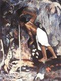 Pape Moe, 1892