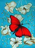 Aqua-Red Butterfly