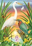 Green And White Herons