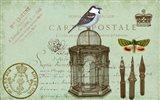 Carte De Visit Bird