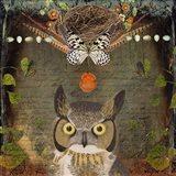 Deep Forest Owl